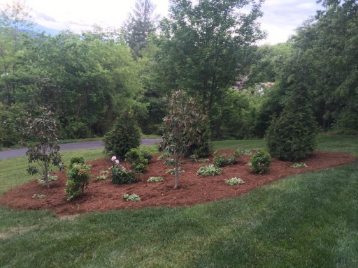 Pruning & Hedge Trimming